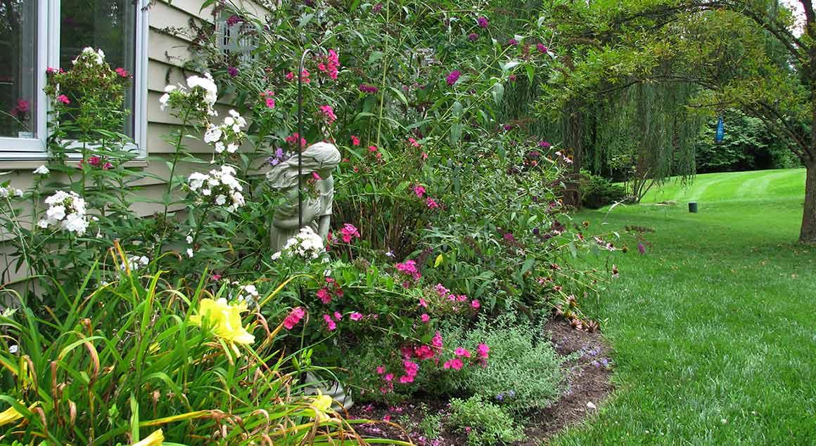 Chesterfield Backyard Butterfly Garden