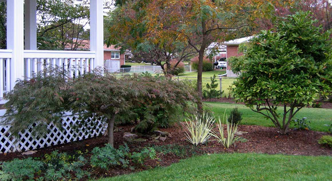 North County front yard plantings
