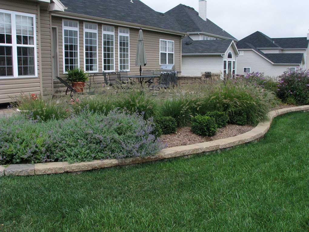 West County Backyard Plantings