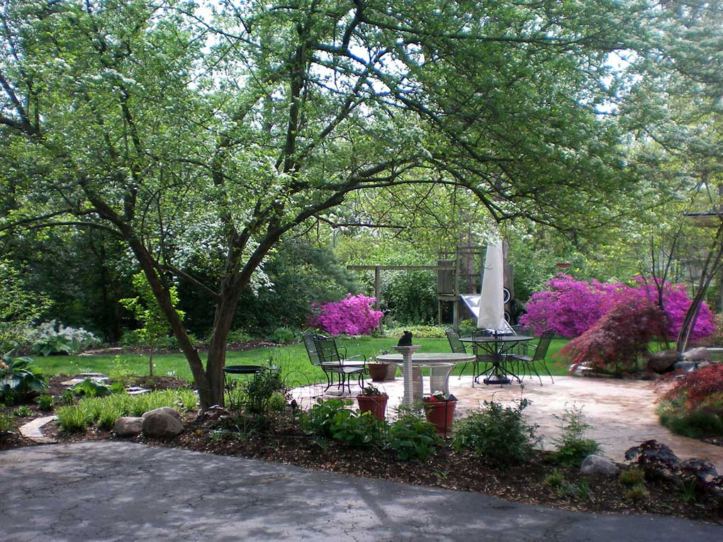 Webster Groves Backyard in Spring