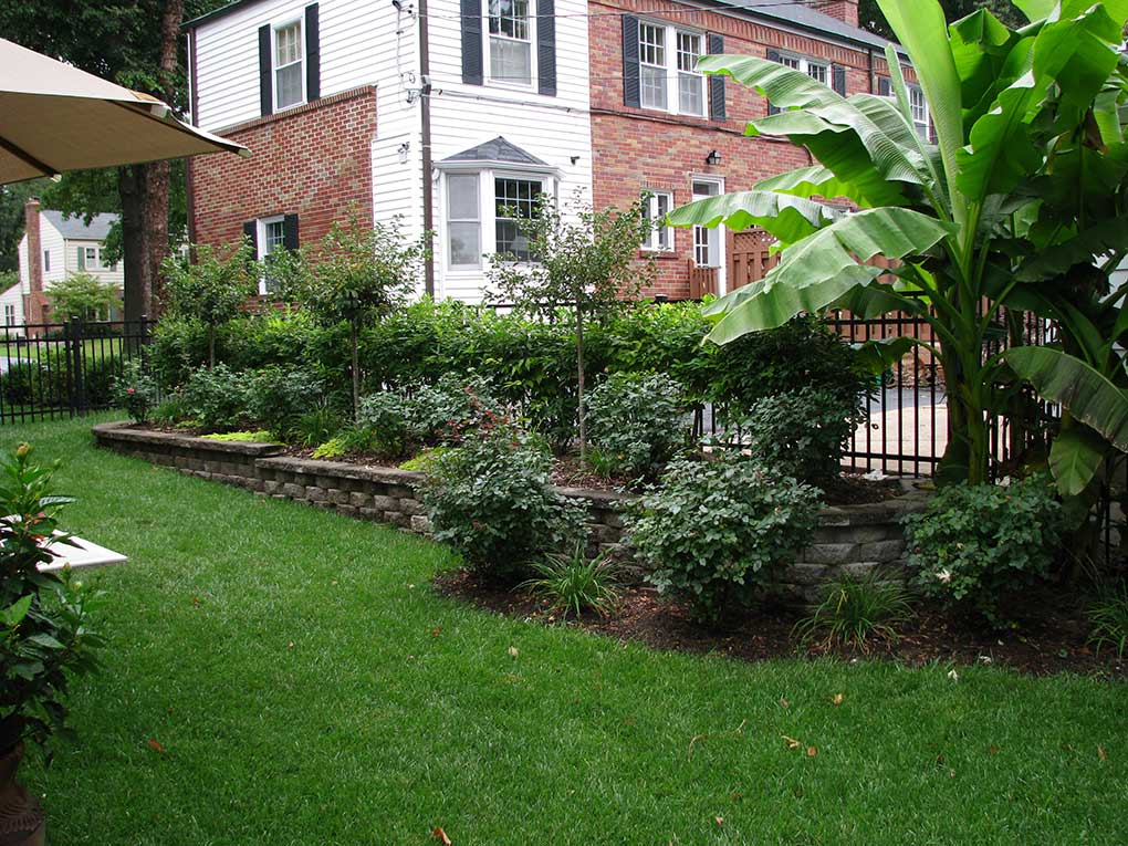 Kirkwood Area Backyard Plantings