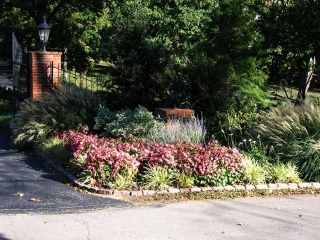 Ladue Entrance Plantings with Annuals