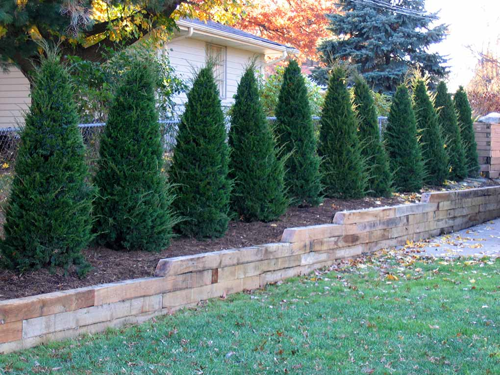 Crestwood Retaining Wall and Trees