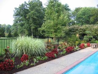 Ladue Poolside Plantings