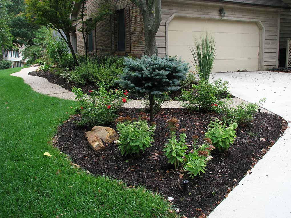 Chesterfield Driveway Plantings