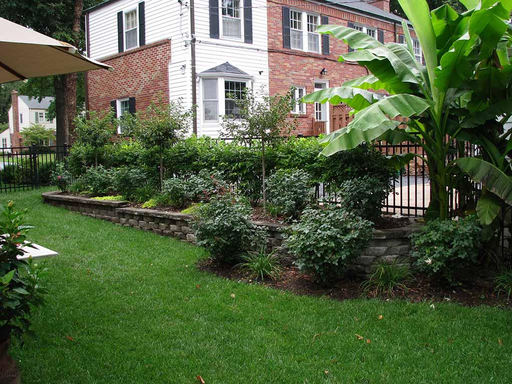 Wrenn's Garden