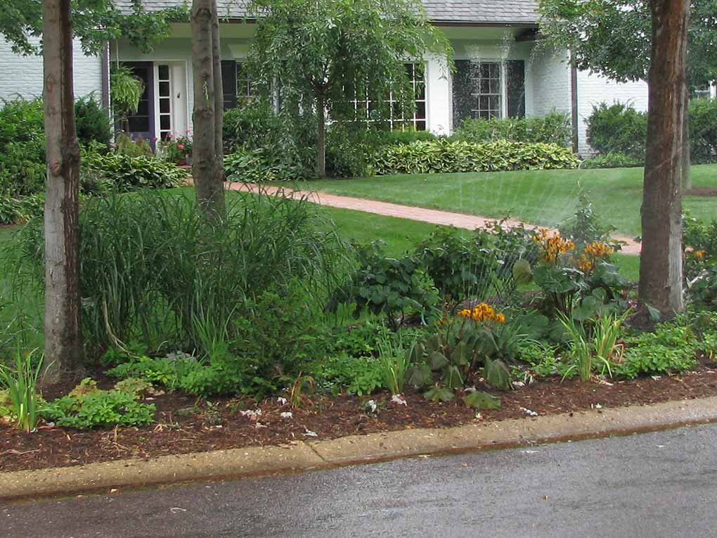 Webster Groves Front Yard Plantings